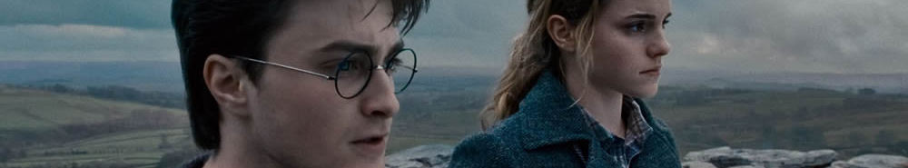 Harry Potter and the Deathly Hallows: Part I Movie Banner