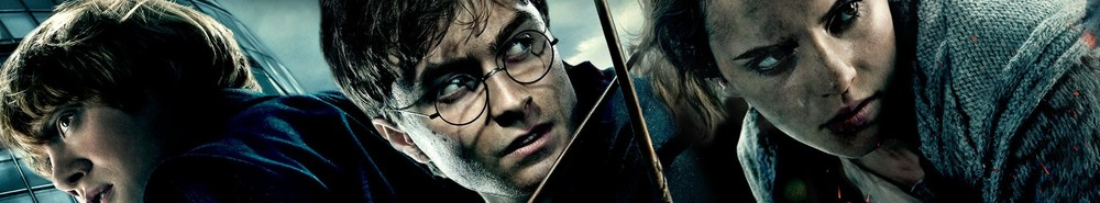 Harry Potter and the Deathly Hallows: Part II Movie Banner