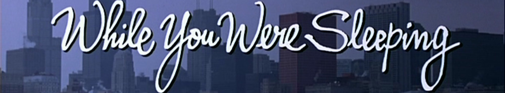 While You Were Sleeping Movie Banner