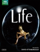 BBC Life: Challenges Of Life