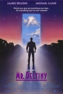Mr. Destiny tv show photo