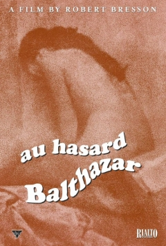 Au hasard Balthazar movoe photo