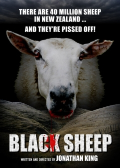 Black Sheep movoe photo