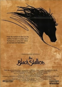 The Black Stallion movoe photo