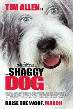 The Shaggy Dog movoe photo