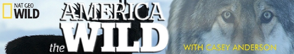 America the Wild with Casey Anderson Movie Banner