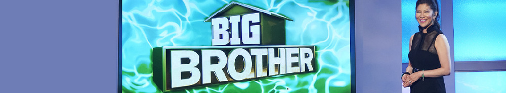 Big Brother Movie Banner