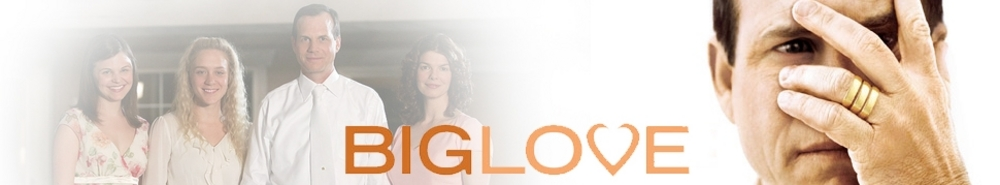 Big Love Movie Banner
