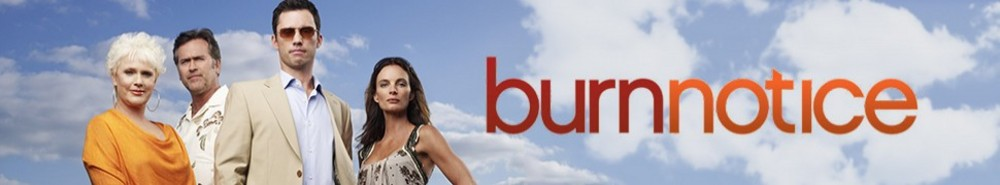 Burn Notice Movie Banner