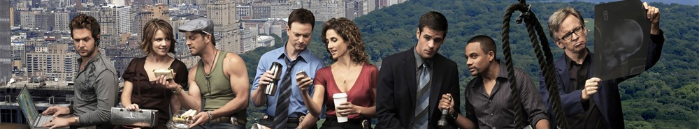 CSI: New York Movie Banner