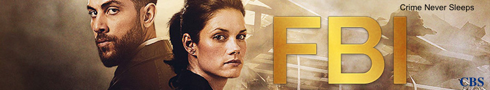 FBI Movie Banner