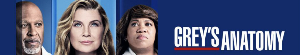 Grey's Anatomy Movie Banner