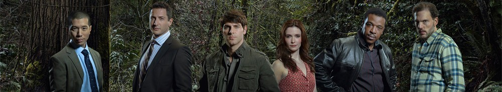 Grimm Movie Banner