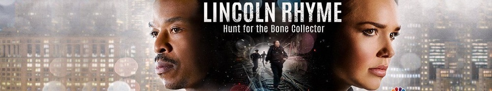 Lincoln Rhyme: Hunt for the Bone Collector Movie Banner