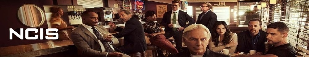 NCIS Movie Banner