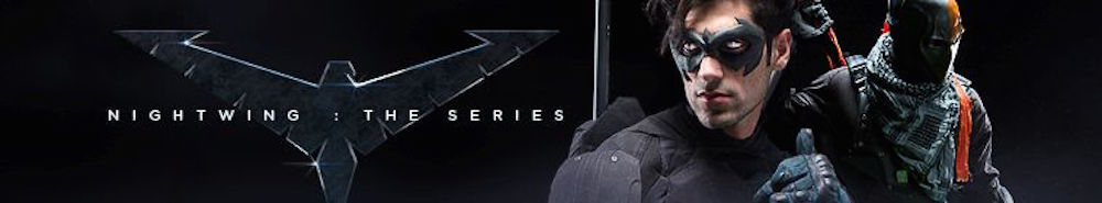 Nightwing: The Series Movie Banner