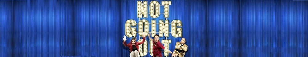 Not Going Out (UK) Movie Banner