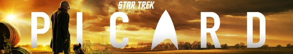 Star Trek Picard Movie Banner