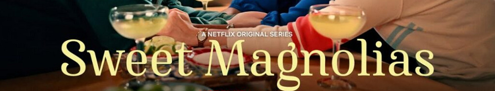 Sweet Magnolias Movie Banner