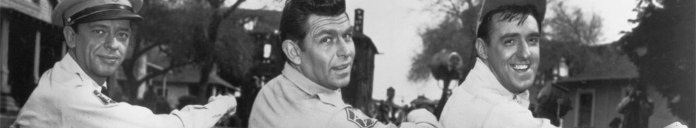 The Andy Griffith Show Movie Banner