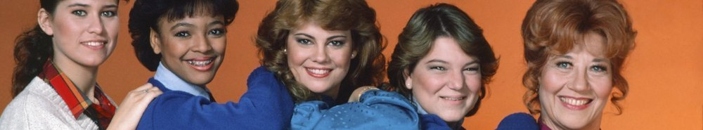 The Facts of Life Movie Banner