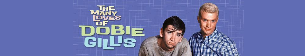 The Many Loves of Dobie Gillis Movie Banner