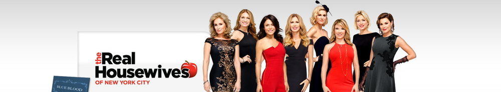 The Real Housewives of New York City Movie Banner