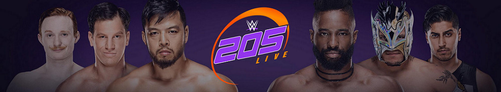 WWE 205 Live Movie Banner