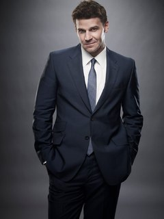 Special Agent Seeley Booth photo