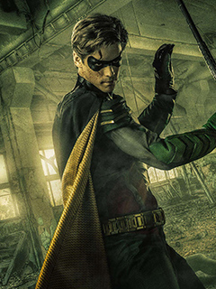 Dick Grayson, Robin photo