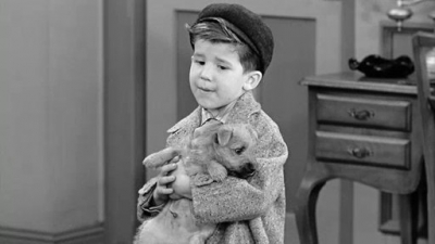 Little ricky ricardo i love lucy characters sharetv for Who played little ricky in i love lucy