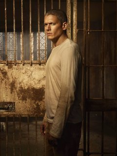 Michael Scofield photo
