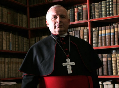 Cardinal Laveigh photo