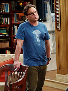 Leonard Hofstadter photo