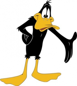 Daffy Duck photo