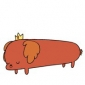 Hot Dog Princess Adventure Time with Finn and Jake