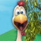 Peck the Rooster Back at the Barnyard