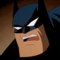 Batman Batman: The Animated Series