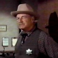 Sheriff Roy Coffeeplayed by Ray Teal