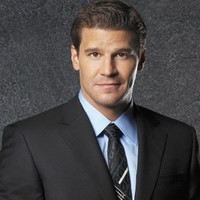 Special Agent Seeley Booth played by David Boreanaz