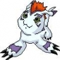 Gomamon Digimon: Digital Monsters