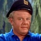 Jonas 'The Skipper' Grumby played by Alan Hale Jr.