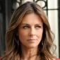 Diana Payne played by Elizabeth Hurley