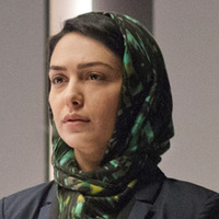 Fara Sherazi  played by Nazanin Boniadi