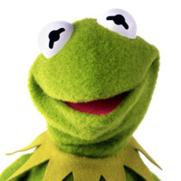 Kermit the Frogplayed by Steve Whitmire