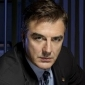 Detective Mike Loganplayed by Chris Noth
