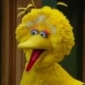 Big Bird played by Caroll Spinney