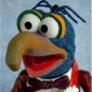 The Great Gonzo Showbiz Today