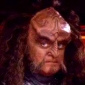 Chancellor Gowron played by robert_oreilly