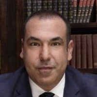 Louis Littplayed by Rick Hoffman